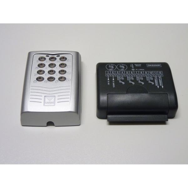 DKS250L - Tastiera retroilluminata con interfaccia